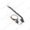Кнопка Home для Apple iPhone 5S/SE золото в сборе с шлейфом+толкатель+сканер