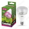 Лампа светодиодная (L482) фито LED15-PL/BIO/E27