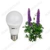 Лампа светодиодная (L542) фито PPG A60 Agro 15w Frost E27 IP20