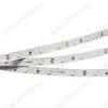 Лента светодиодная ULTRA-5000 12V White6000 (013853)  белый холодный 12V 12W/m 5630*30